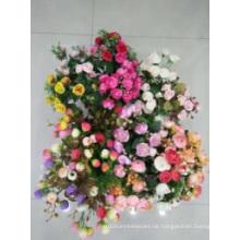 Alle Arten von Blumen zu mögen das Bild von der schönen