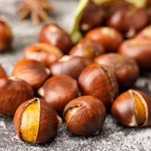 Großhandel Landwirtschaftsprodukte Chinesische Kastanie natürliche Nüsse