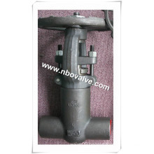 Forged Stainless Steel Globe Valve (J41Y-SW)