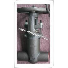 Válvula de Globo de Aço Inoxidável Forjado (J41Y-SW)