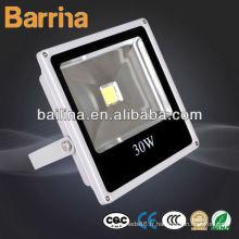 Haute puissance ingénierie intégrée 100W led lampe de projection