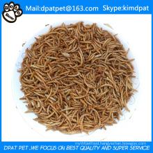Bulk Dried Mealworms Fish Reptile Wild Bird Food