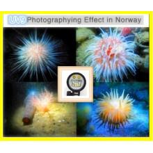 Luz impermeable video subacuática 150m con el poder más elevado 5000lumen