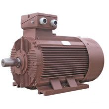 IE2 High Efficiency Three Phase Electric Motor