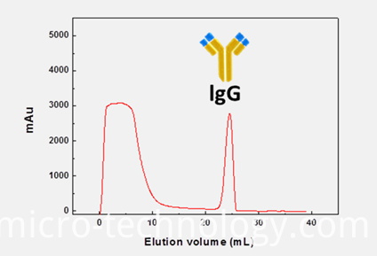 Affinity Chromatography Protein Purification