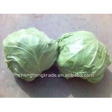 Китайский Новый раунд высокого качества капусты