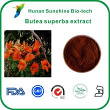 Hiqh Qualität C29H50O Beta-Sitosterin Butea Superba Extrakt