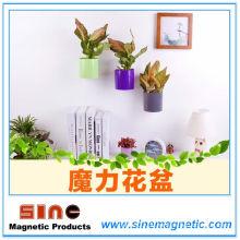 Kreativer Hauptwand-einfacher magnetischer Blumentopf
