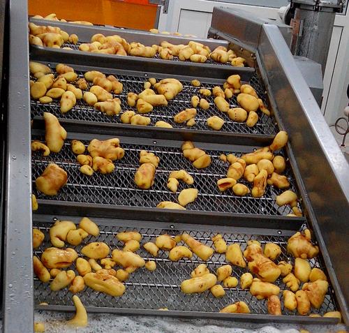 1kg chilled ginger paste-11