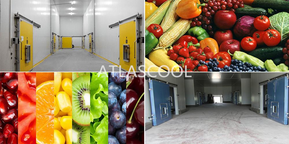 Cold Storage Room for Vegetables
