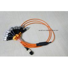 MPO / PC / Male) vers FC / PC Om1 (62.5 / 125) Fibre Optique (1.5m)