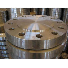 JIS B2220/JIS B2202 Forged Flanges, SUS304/304L/316/316L Forged Flanges