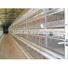 Automatic High Quality Chicken Cage with Automatic Feeding System