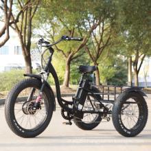 48V 500W/750W Fat Tire 3 Wheel Cargo Electric Tricycle