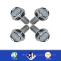 Customized Bolt and Nut