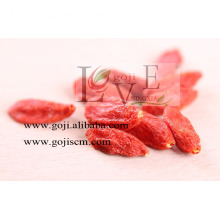 TOP QUALITÉ NINGXIA GOJI BERRY ORIGINE ORGANIQUE