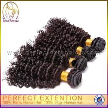 China Top Ten Afro rizado cabello humano tejido productos en América