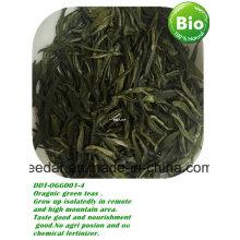 Chá orgânico na primavera