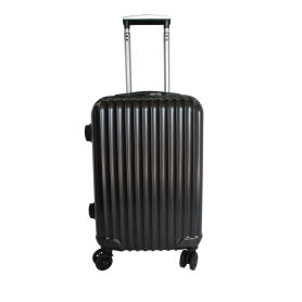 Bagage PC en ABS brossé Double Spinner Texture