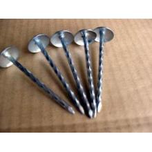 Umbrella Head of All Sizes Roofing Nail on Sale