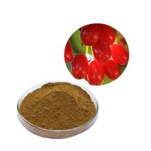 Natural herbal extract Dogwood Extract Powder Cornus Officinalis Fructus Corni Extract