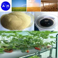 Aminoácidos de fertilizante de nutrientes de oligoelementos con alto contenido de nitrógeno