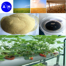 Calcium Amino Acid Chelate Minerals Nutrients Fertilisant