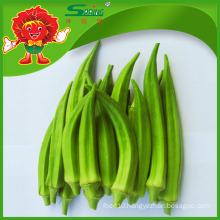 wholesale frozen whole okra