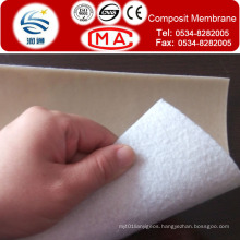 Coat Geotextile HDPE Membrane USD0.75/Sqm for 400g/Sqm for Dam