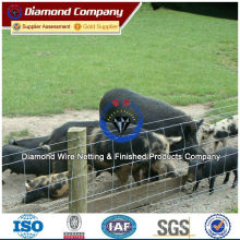 ISO, BV, SGS Certificate Goat Fencing