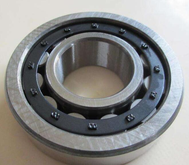 Cylindrical Roller Bearing 1040