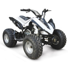 EPA 110CC ATV QUAD-BIKE