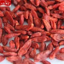 Chinesische organische goji Beere des Großverkaufs