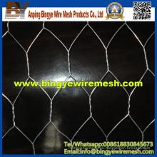 Proveedor de alambre galvanizado Hexagonal Wire Mesh