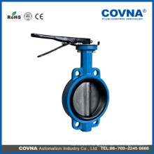SS DIS Cast iron wafer butterfly valve