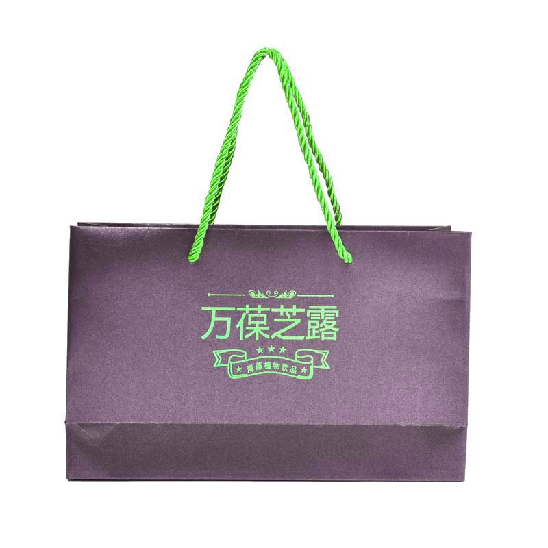 Shopping Portable Paper Bag