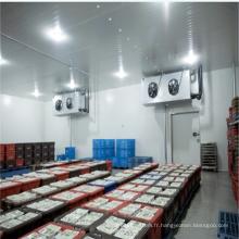 Congélateur de réfrigérateur de pièce froide de haute qualité pour le légume