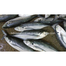 Целая круглая замороженная рыба из отварного мяса из морепродуктов