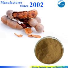 Hochwertiger Naturtamarindensamenextrakt, Tamarindensamenpulver, Tamarindextrakt