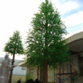 Outdoor Artificial Pine Tree