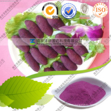 Narural Pigment Powder Purple Sweet Potato Nutrition