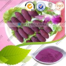 Narural Pigmento Pó Roxo Batata Doce Nutrição