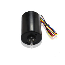 24 Volt High Torque PM Brushless Motor