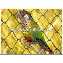 Poulet / treillis métallique hexagonal pour oiseau