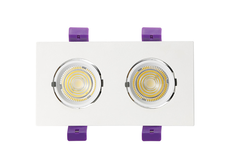 two head trunk downlight