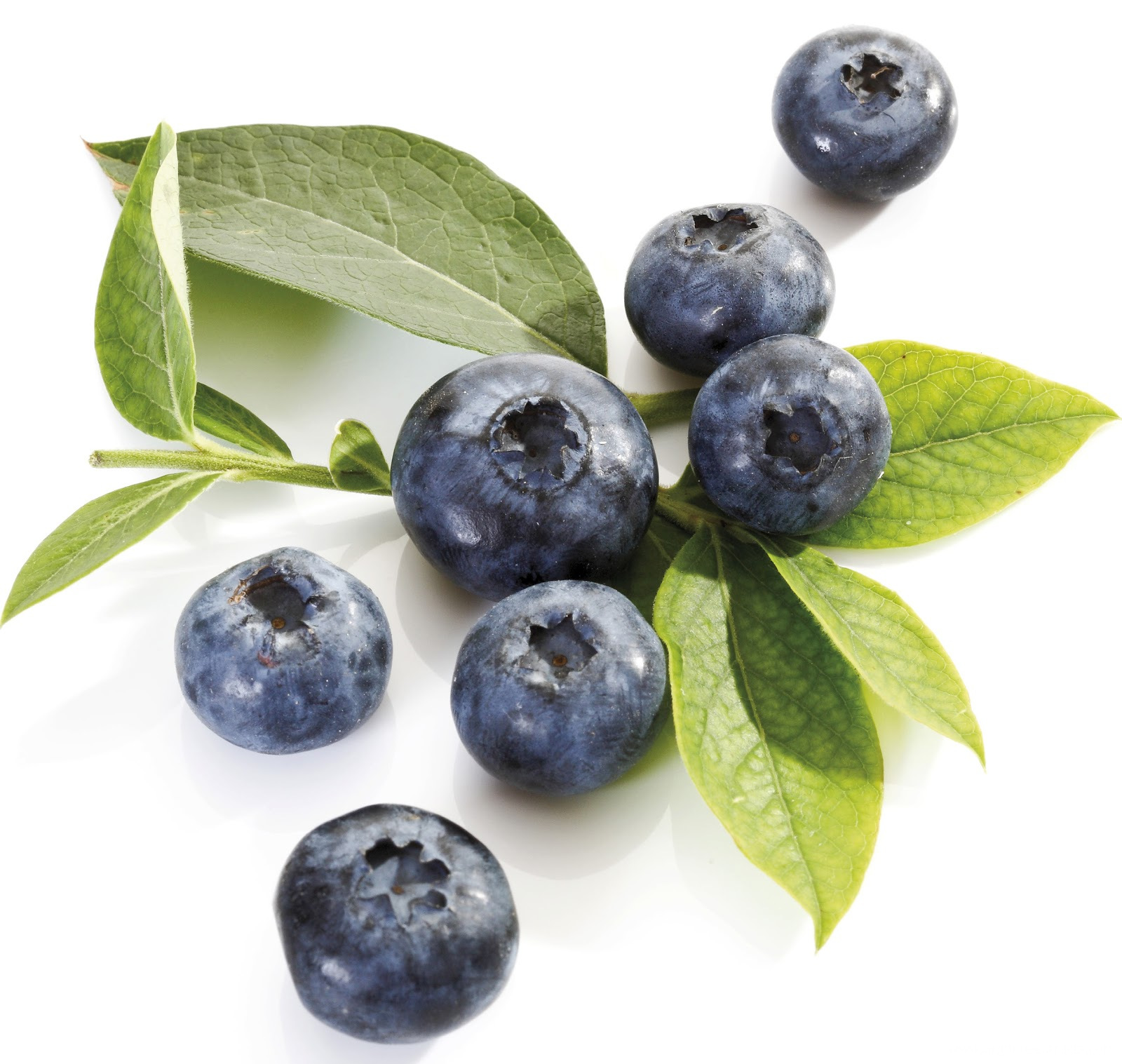 Blueberry-fruit-34914645-1600-1517