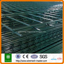 High quality and best price double wire fence