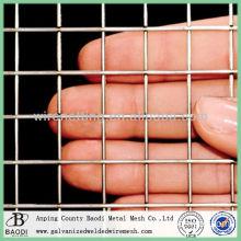 Diamond Wire Mesh Welded Wire Mesh Woven Wire Mesh (Baodi Manufacture ISO9001:2000)