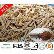 Großhandelslieferungs-100% natürliches Tongkat Ali extrahieren Pulver 100: 1