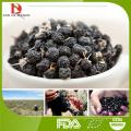 supply black goji berry